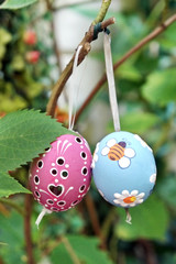 Colored Easter Eggs hanging on Ribbons on branch