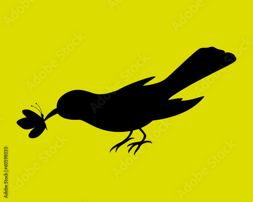 Vector silhouette. Bird eating butterfly.