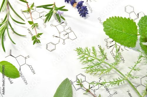 Papiers peints Lavande herbs and science