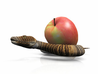 the snake and the apple