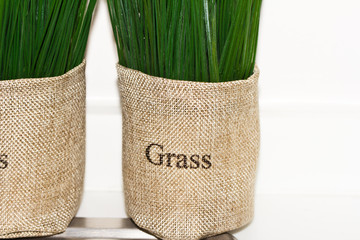 The grass bag brown color