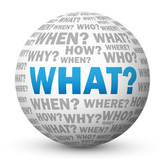 """WHAT?"" Globe (questions explanations help support why how)"