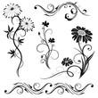 Obrazy na płótnie, fototapety, zdjęcia, fotoobrazy drukowane : Blumen, Blüten, Pflanzen, Vektor Set