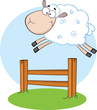 White Sheep Jumping Over The Fence