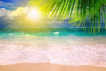 Caribbean Dream beach.