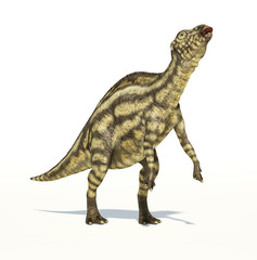 Maiasaura dinosaur, young child, photorealistic representation.
