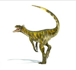 Herrerasaurus dinosaur, photorealistic representation. Dynamic v