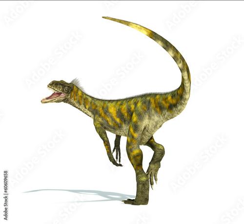Herrerasaurus dinosaur, photorealistic representation. Dynamic v - 60609658