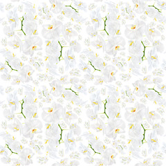 White orchid seamless pattern