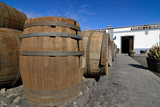 Barrels for wine
