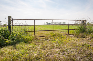 Rusty iron gate between wooden poles
