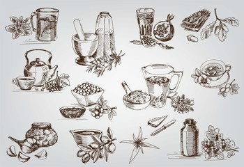 plants and herbs in folk medicine