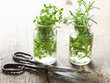 fresh thyme and rosemary herbs in glass