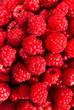 Heap of Fresh sweet raspberries close up. Raspberry fruit backgr