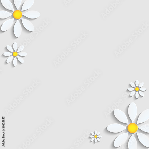 floral background.camomiles from a paper on a gray background.ve