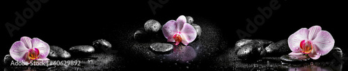 Horizontal panorama with pink orchids and zen stones on black ba|60629892
