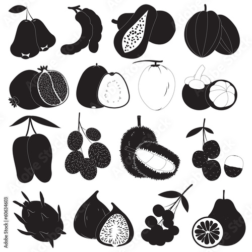 Tropical Fruits Vector Set