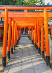 Torii gates of a small Inari shrine at Ikuta-jinja in Kobe