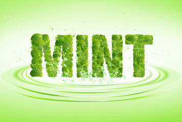 Mint word leaves of mint, menthol, on fresh water