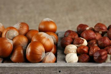 Hazelnuts in wooden box