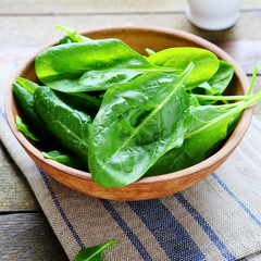 salad bowl and spinach leaves