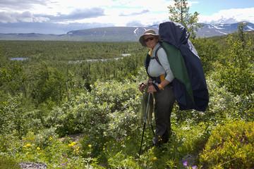 Kungsleden-Trekking