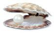 wealthy pearl - 60649285