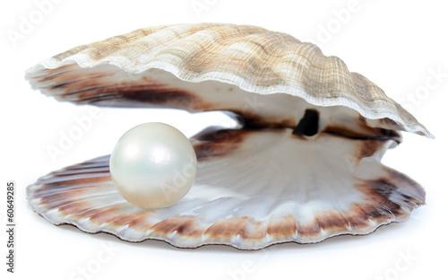 wealthy pearl
