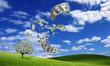 .falling dollar bills from money tree