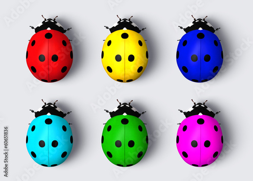 Colored ladybugs