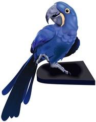 Blue Exotic Parrot