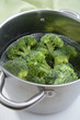 Broccoli in a steamer