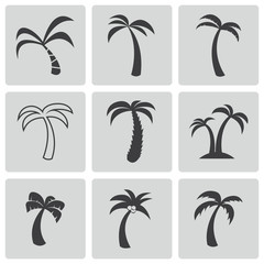 Vector black palm icons set