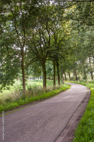 Curved country road in the Netherlands
