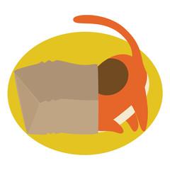 red cat in paper bag