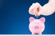 Money Savings - Coin and Piggy Bank