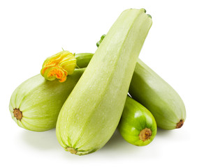 Fresh zucchini with flower isolated on white background
