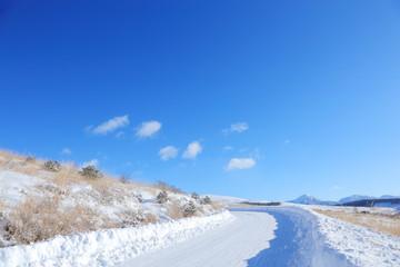 霧ヶ峰の雪道