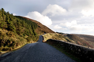 Country Road/ Wicklow Mountains/ Sally Gap/ Ireland