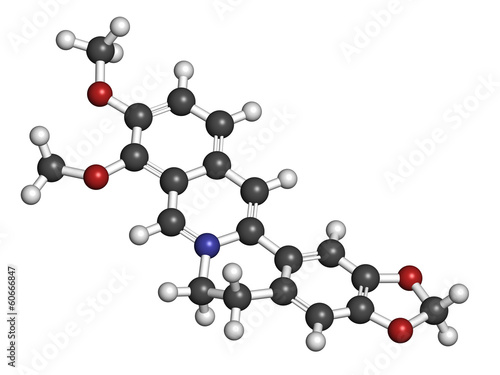 Berberine alkaloid molecule. Present in number of plants.