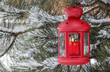 Red lantern hanging on fir branch