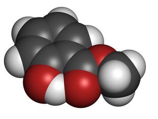 Methyl salicylate (wintergreen oil) molecule.