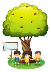 Kids under the tree beside the empty wooden board