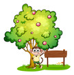 A monkey under the tree beside the empty wooden signboard
