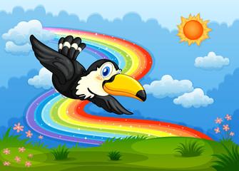 A bird in the sky with a rainbow