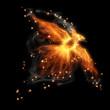 Fire bird - 60671673