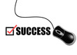 Success with mouse