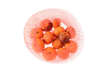 Rotten orange in red net isolated on white.