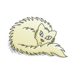 Light Fluffy Cat Vector Illustration