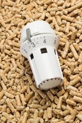 Holzpellets und Thermostat